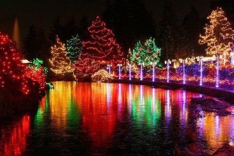 Božićni show